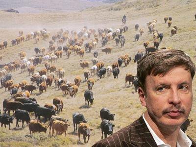 10-stan-kroenke-owns-740000-acres