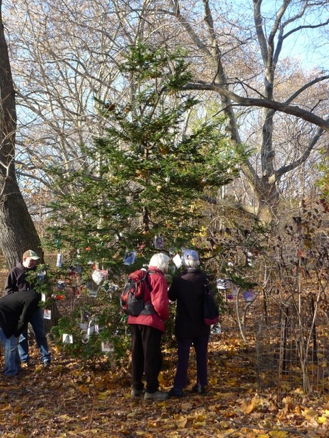 Central-Park-Secret-Christmas-Tree-Dedicated-Memory-to-Pets-NYC