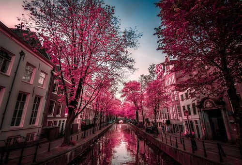Streets-of-amsterdam